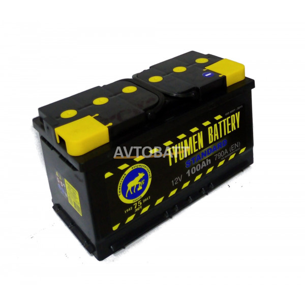 Аккумулятор TYUMEN STANDART 100 Ah (п/п)